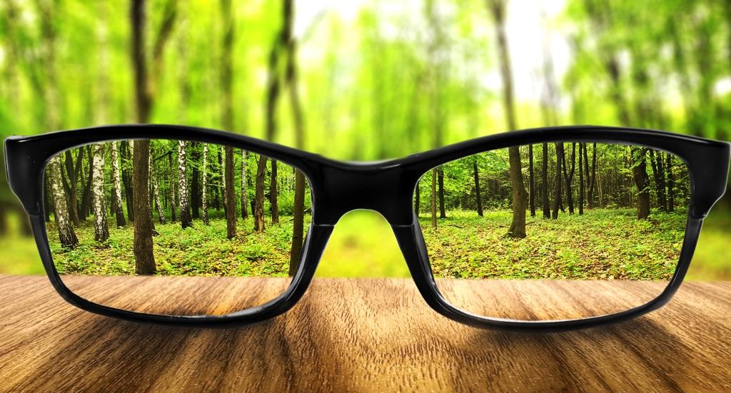 Lentes frente a un bosque, a través de los lentes se puede ver más claro