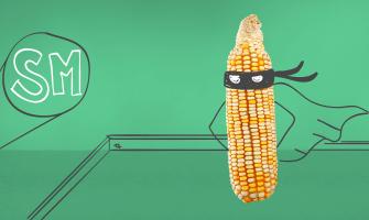 El maíz: nuestro aliado del ahorro.