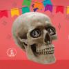 Cuánto cuesta morir en México