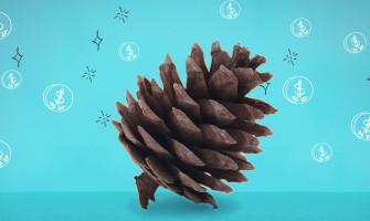 8 Razones para ahorrar en invierno