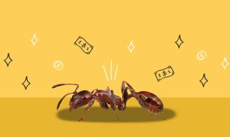 Cómo terminar con los gastos hormiga desde hoy