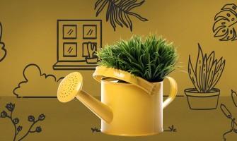 7 maneras de ahorrar con un jardín.
